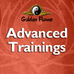 Advanced Trainings